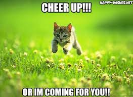 Cheer Up Meme - best cheer up memes funny images to cheer you up happy wishes