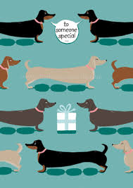 dachshund wrapping paper dachshund cards gift wrap mad about dachshunds