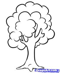 how to draw a simple tree step by step trees pop culture free