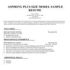 Modeling Resume Sample Sample Aspiring Plus Size Model Resume Fancy Inspiration Ideas