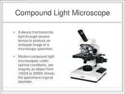 what is a light microscope used for microscopy