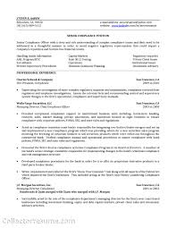Job Resume Set Up by Bank Officer Resume Resume For Your Job Application