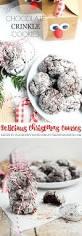 best 25 chocolate crinkle cookie recipe ideas on pinterest