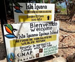 iguana island exploring isla iguana panama obligatory traveler