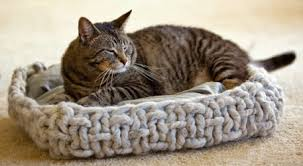 Cat Bed Pattern Knitting For Cats
