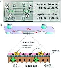 integration and application of optical chemical sensors in