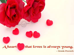 Funny In Love Quotes by Love Quotes Picasa Pics Store