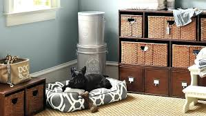 dog toy storage box uk dog toy storage containers uk check out our