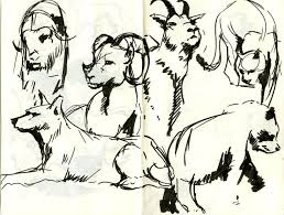 52 best dibujos images on 52 best dibujos animales images on pinterest drawings animals