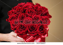 Bouquet Of Roses Red Roses Bouquet Stock Images Royalty Free Images U0026 Vectors