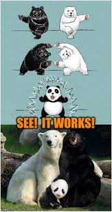 Funny Panda Memes - ultimate fusion imgflip
