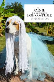 dog candy corn witch costume homemade halloween costume for dogs jaderbomb