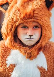 Fox Face Makeup Halloween by Child Fox Costume