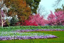 Dallas Arboretum And Botanical Garden Dallas Arboretum And Botanical Garden Dallas Attractions Review