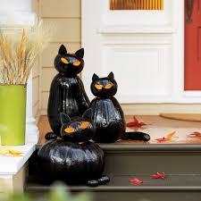 make black cat pumpkins sunset