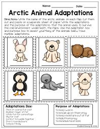 arctic animals free resource freebie students cut and paste