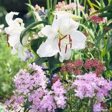 best fragrant flowers for gardens in the northwest