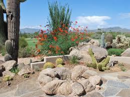 Landscape Rock Phoenix by Desert Landscape Design Cave Creek U0026 Phoenix Az