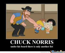 Chuck Norris Pokemon Memes - chuck norris your argument is invalid by specis meme center