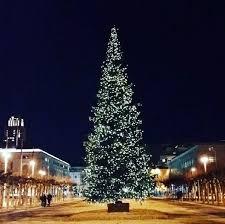 san francisco tree lighting 2017 6 best christmas activities in san francisco bright lights of america