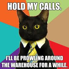 Warehouse Meme - hold my calls cat meme cat planet cat planet