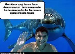 Funny Shark Meme - jaws theme song duunnn dunnn duuuunnnn duun duuunnnnnnnn