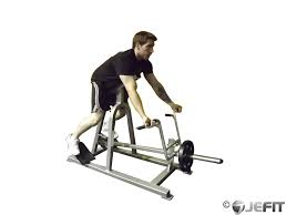 Incline Bench Dumbbell Rows Dumbbell Reverse Grip Incline Bench One Arm Row Exercise
