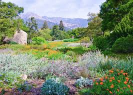 Santa Barbara Botanic Gardens Destination Santa Barbara California E Travel