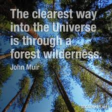 john muir dog quote muir monday the clearest way into the universe socal hiker