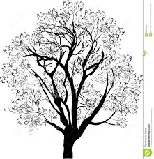 black and white tree sketch beatiful tree