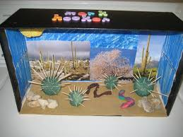 best 25 desert ecosystem ideas only on pinterest desert biome