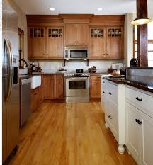 kitchen kitchen cabinets colors within fantastic how to choose