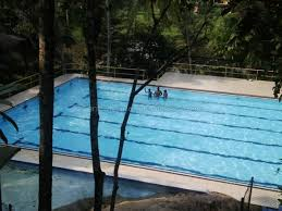 flower garden stay apartment malabe apartments near colombo