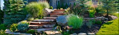 landscaping denver co wild irishman landscape design and build
