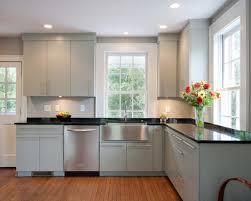 Molding Kitchen Cabinet Doors Flat Panel Kitchen Cabinets Plush Design 8 Understanding Kitchen