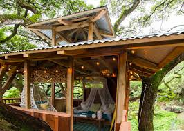 sample tree house design with best interior ideal space