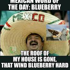Memes Mexican - mexican word of the day blueberry funny remarks pinterest