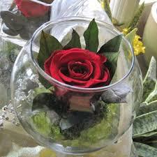 preserving flowers preserving fresh flowers
