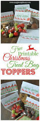 best 25 bag toppers ideas on pinterest halloween treat bags