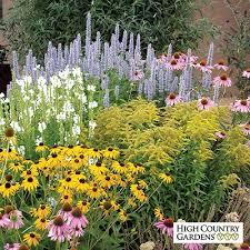 Garden With Trellis Pre Gardens All The Best Garden In 2017