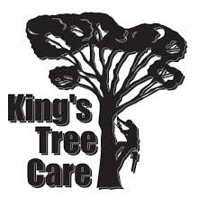 affordable tree service crossville tn 123 best tree care images on tree care a tree