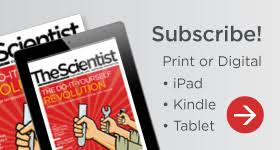 black friday magazine subscriptions the scientist magazine life sciences news and articles
