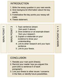 English grammar essays writing   Ricky Martin