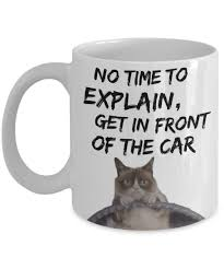 Meme Mug - grumpy cat meme mug funny grumpy cat mug no time to explain get