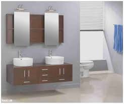 Wall Mounted Bathroom Shelving Units by Elegant Wall Mounted Bathroom Cabinets Uk Housz Us