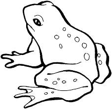 free printable frog coloring pages for kids throughout picture of