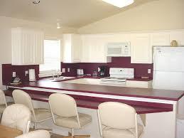 Purple Kitchen Cabinets by Beautiful Kitchen Designs In Purple Color Enticing Purple 10
