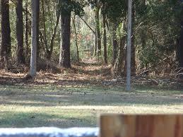 my backyard shooting range getting an upgrade