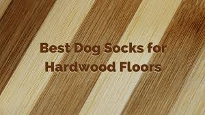 protect hardwood floors best dog socks for hardwood floors how to protect your floors and