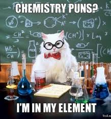 Chemistry Jokes Meme - science pun 3 geekynerdystuff pinterest science puns